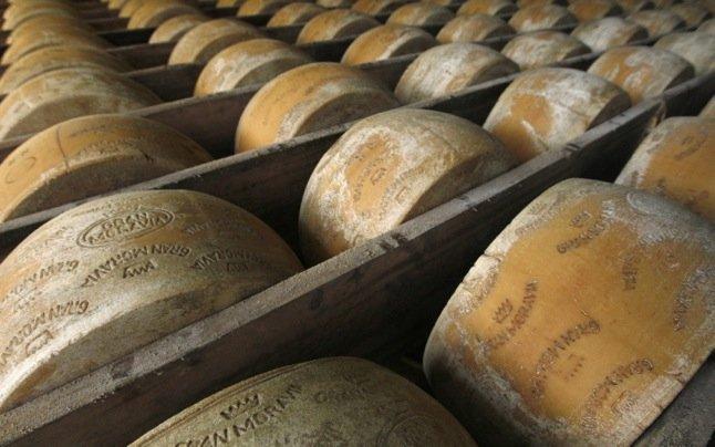 cheese.width-646.jpg