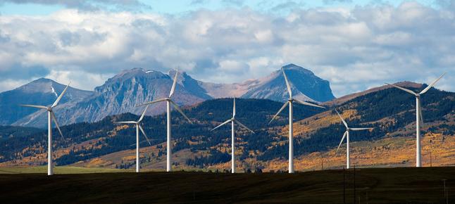 windmills.width-646.png